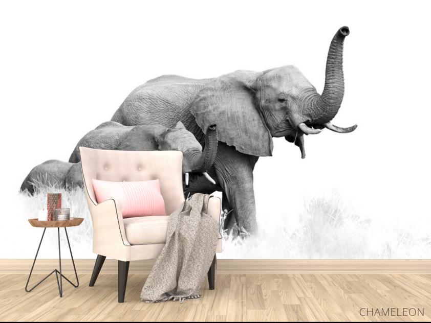 Фотообои семья слонов - 4