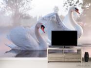 Фотообои Лебеди - 2