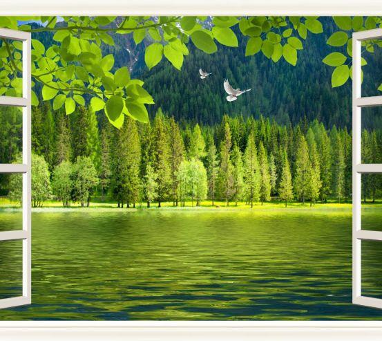 Фотообои Лес за окном 24949