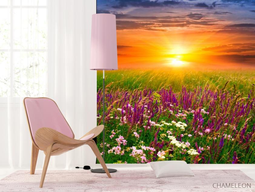 Фотообои Полевые цветы, закат - 4