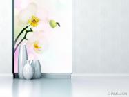 Фотообои Цветущий абрикос - 1
