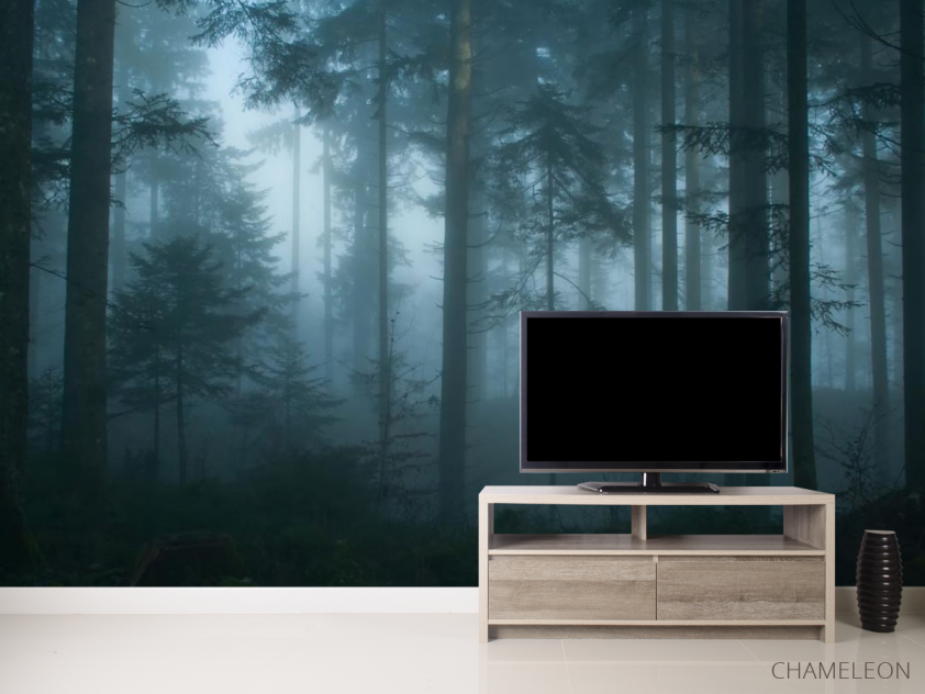 Фотообои темный лес - 2