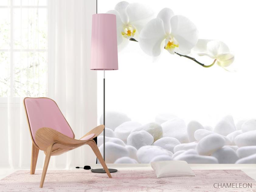 Фотообои Орхидеи белые - 4