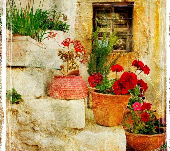 Фотообои Цветы на ступеньках 0059