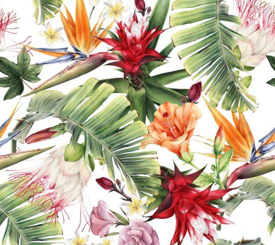 Фотообои Тропические листья и цветы 23589