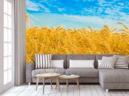 Фотообои Пшеница - 3