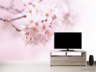 Фотообои Цветущий весной абрикос - 2