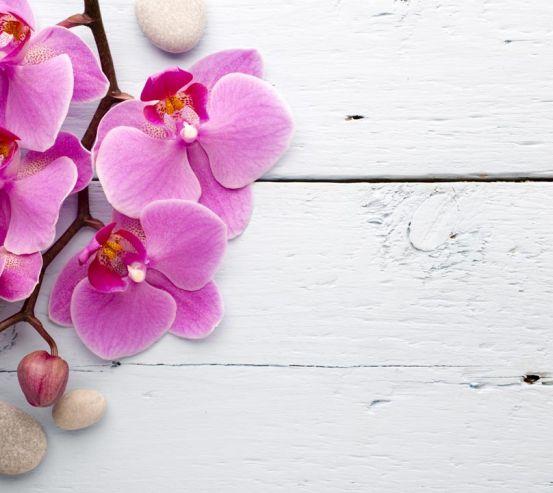 Фотообои сиреневая орхидея на белом деревянном фоне 20888