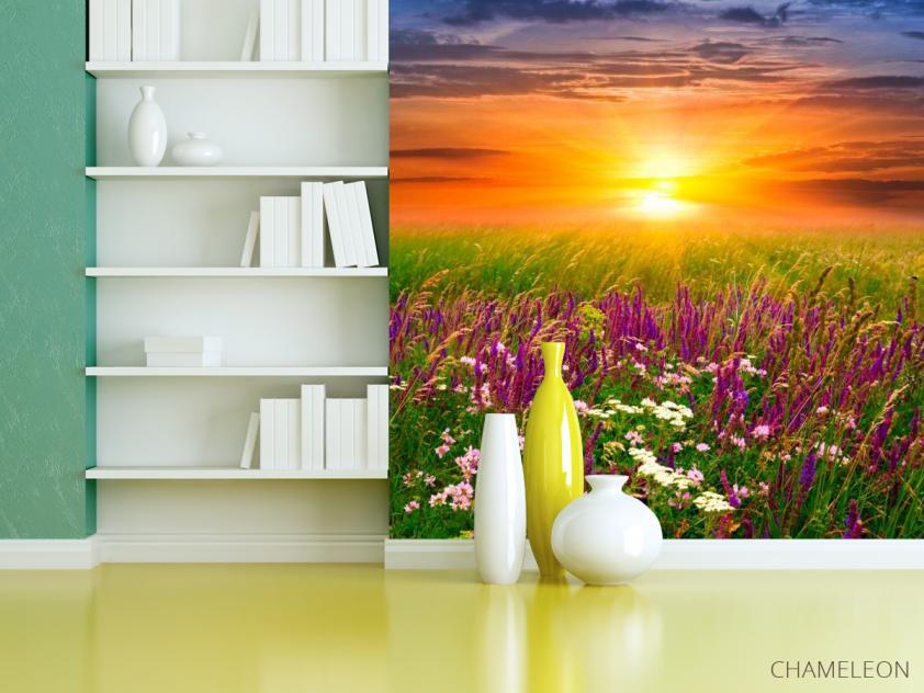 Фотообои Полевые цветы, закат - 3