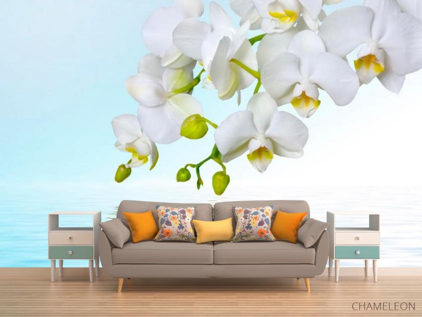 Фотообои Белые орхидеи - 1