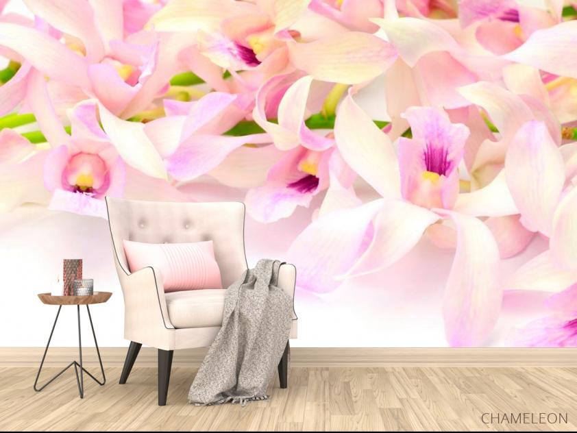 Фотообои Нежно-розовые орхидеи - 4