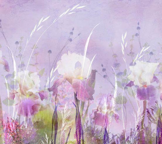 Фотообои полевые цветы 17283
