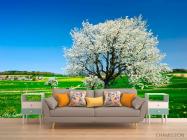 Фотообои Весна, цвет - 1
