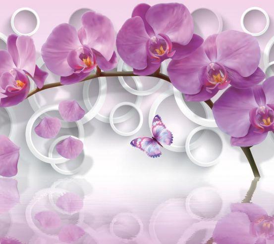 Фотообои сиреневая орхидея и белые круги 21660