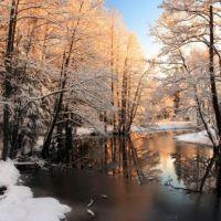 Фотообои зима