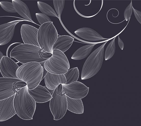 Фотообои Векторные узоры цветы 23877