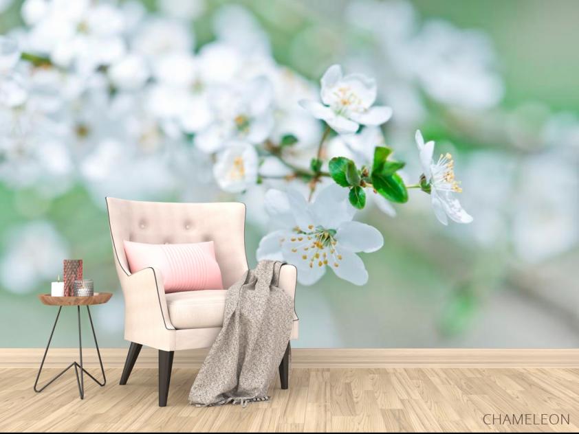 Фотообои Весной цветущий абрикос - 4