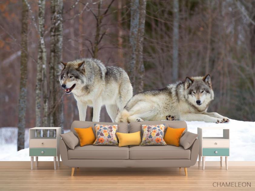 Фотообои два волка на снегу - 1