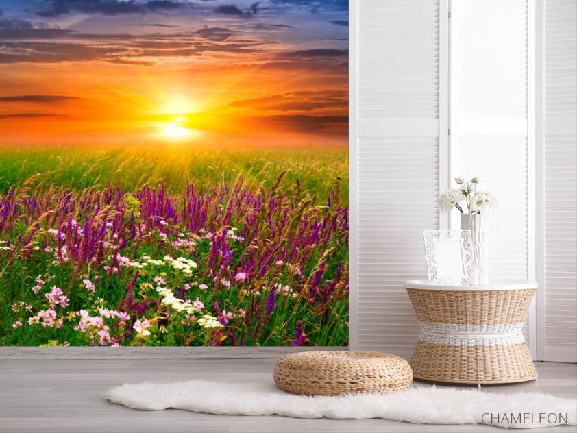 Фотообои Полевые цветы, закат - 2