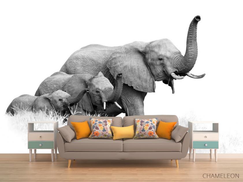 Фотообои семья слонов - 1