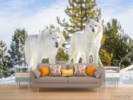 Фотообои два белых волка на снегу - 1