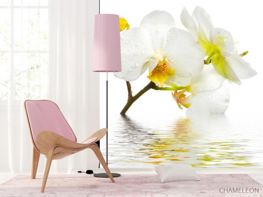 Фотообои Белоснежная орхидея в воде - 4