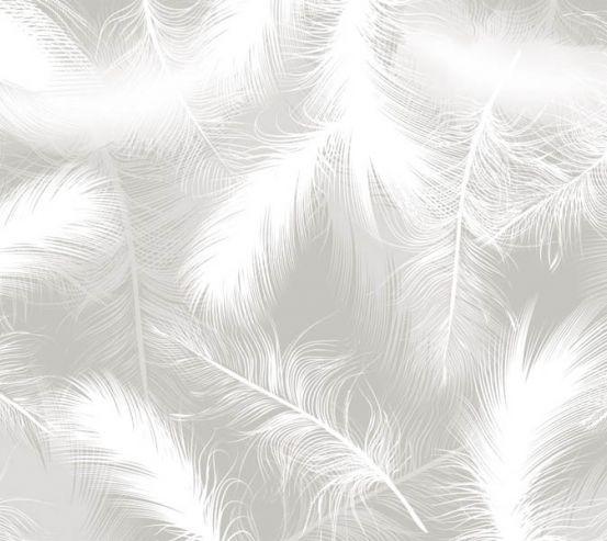 Фотошпалери білі векторні пір'я 29316