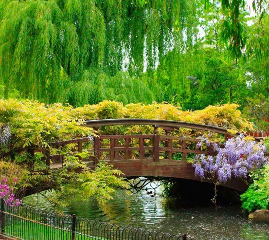 Фотообои Мост через водоём 0846