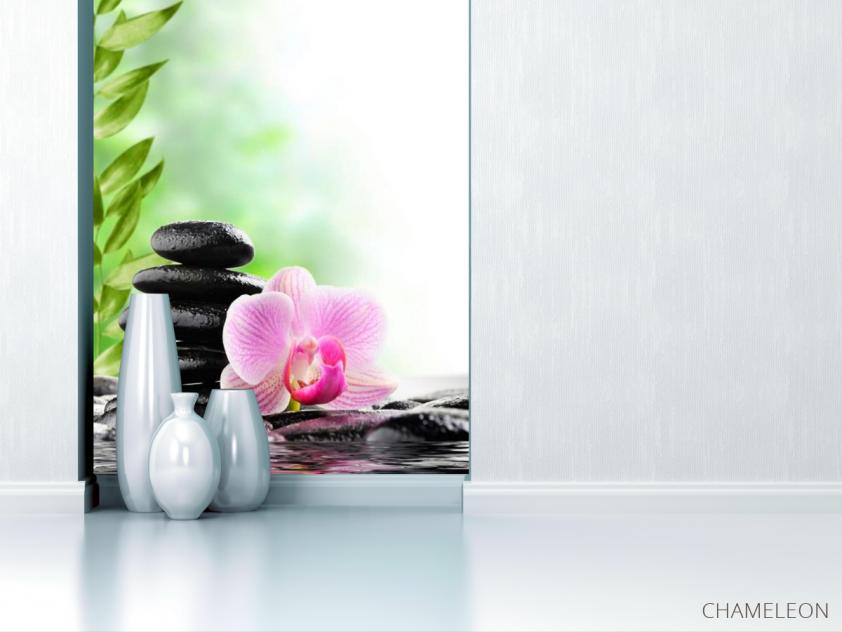 Фотообои Орхидея на камнях - 1