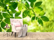Фотообои зеленые листья на дереве - 4