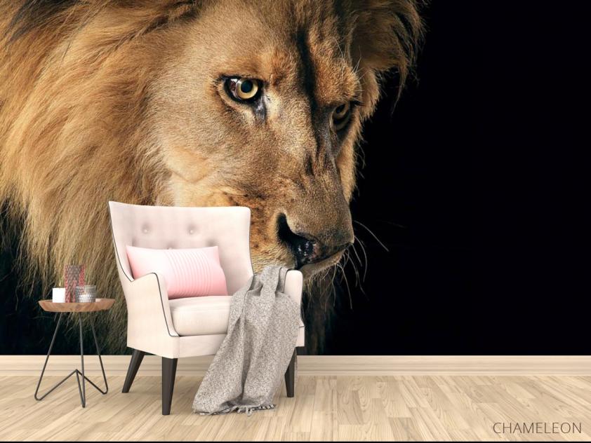 Фотообои морда льва - 4