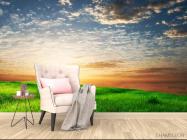 Фотообои Трава, небо - 4
