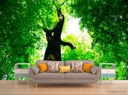 Фотообои Большое,зеленое дерево - 1