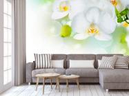 Фотообои Орхидеи в цвету - 3