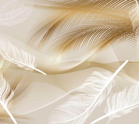 Фотообои Векторные перья коричневые 24980