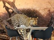 Фотообои леопард на ветке - 1