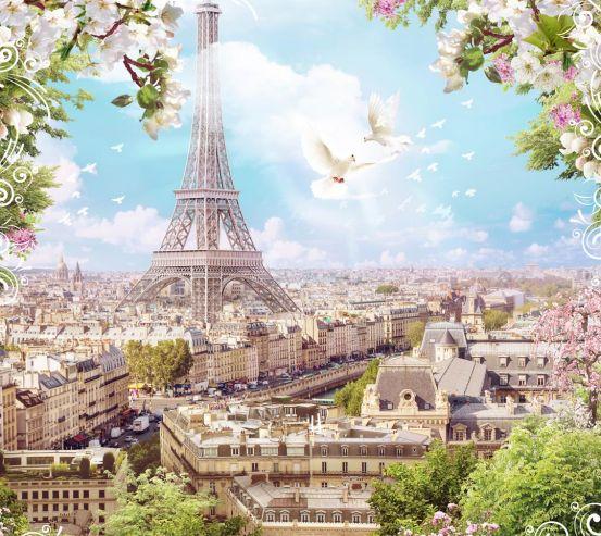 Фотообои голуби и Париж 21358