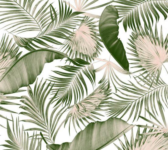 Фотообои Пальмовые листья и банан 23469