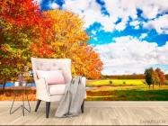 Фотообои Осень, деревья - 4