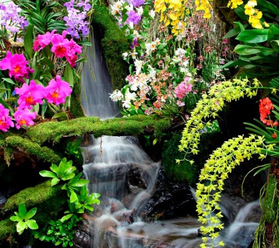 Фотообои Водопад 1749