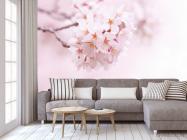 Фотообои Цветущий весной абрикос - 3