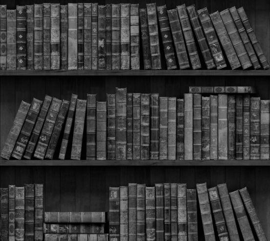 Фотообои книги на полке 13442-h