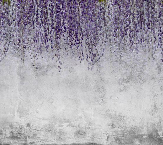 Фотообои Глициния на фоне бетонной стены 28366