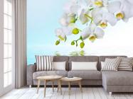 Фотообои Белые орхидеи - 3