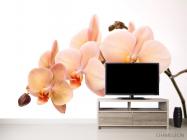 Фотообои Веточка орхидей - 2