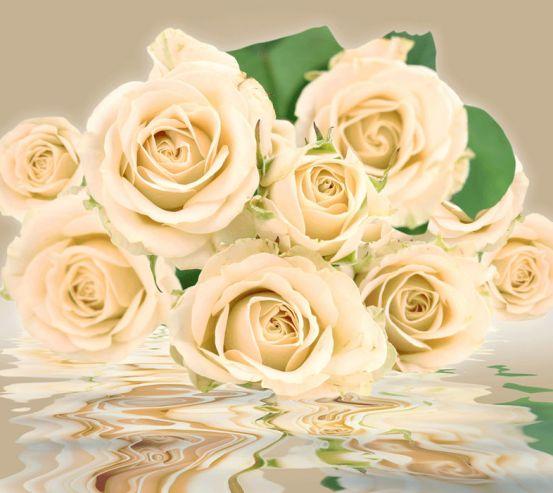 Фотообои Бежевые розы 24231