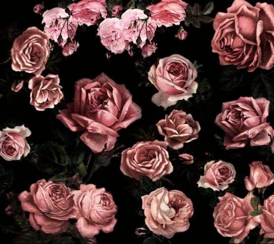 Фотообои Розы 19870