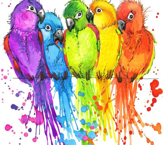 Фотообои пять разноцветных попугаев рисунок 20907