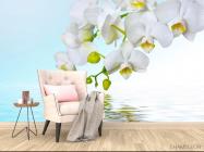 Фотообои Белые орхидеи - 4