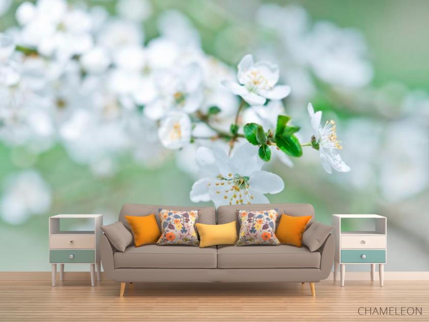 Фотообои Весной цветущий абрикос - 1